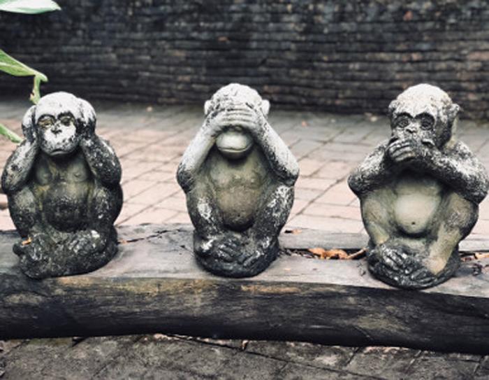 3 Monkeys of Knowlegde